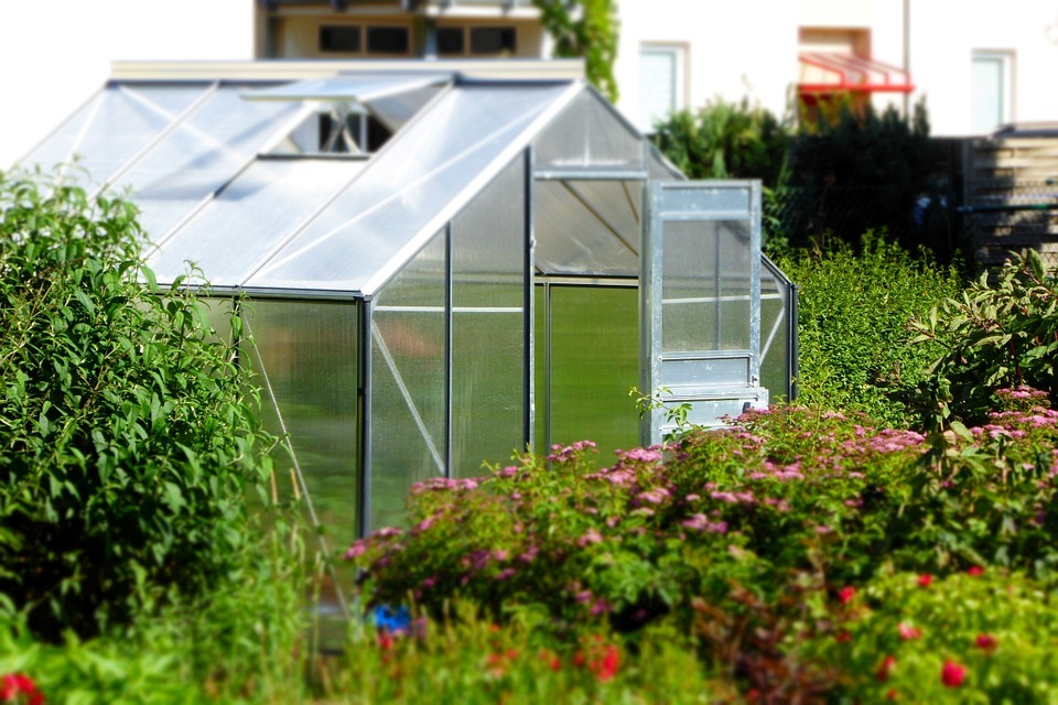 where greenhouse available