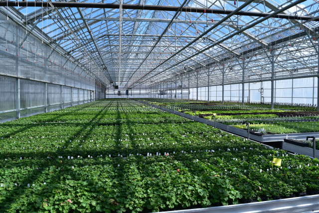 What is essential for a greenhouse