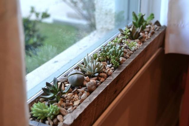 Window-Ledge-Decor-Idea1