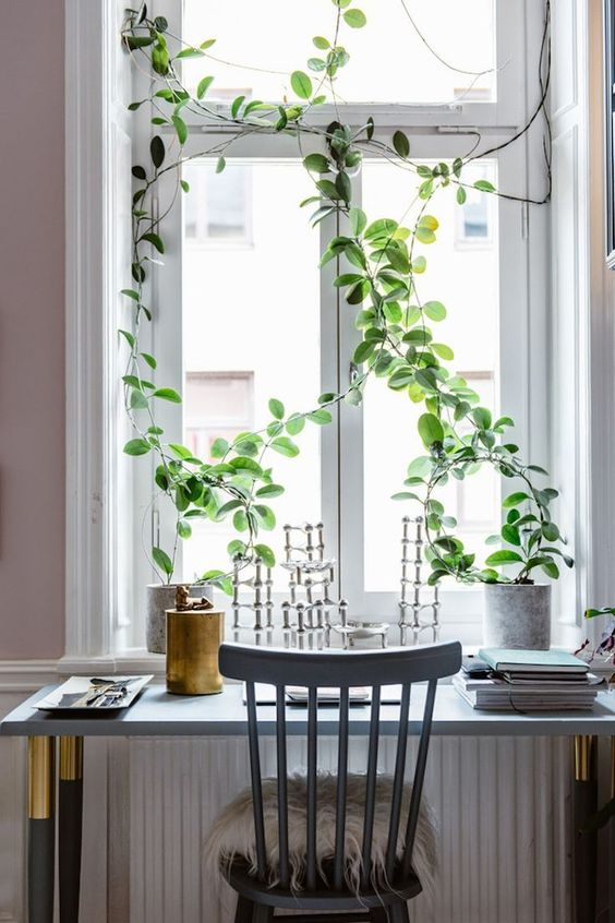 Window-Ledge-Decor-Idea13