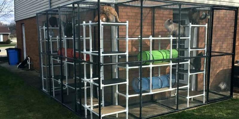 modern cat house designs 17