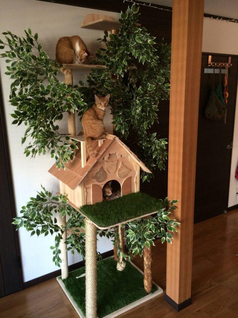 modern cat house designs 8