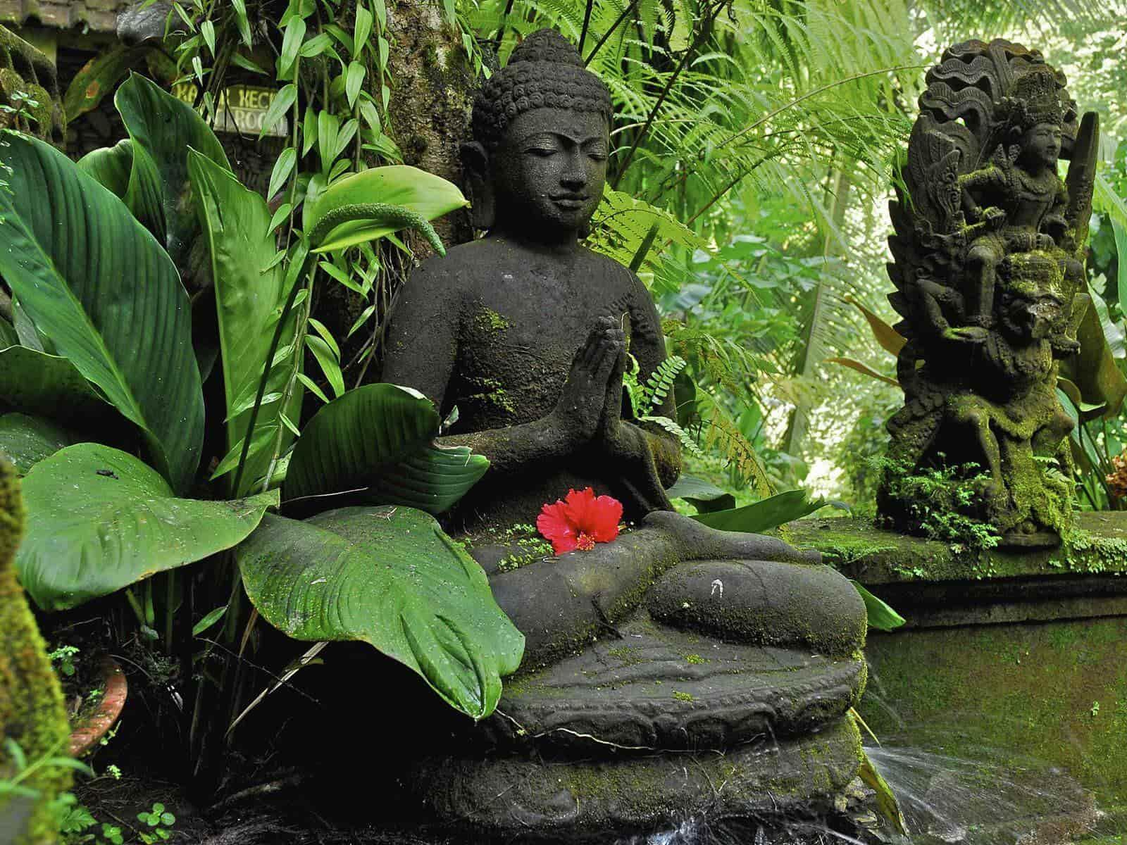 Garden Artifact 6