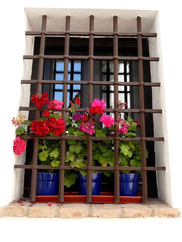Simple Yet Modern Window Grill Designs to Decorate Windows 6