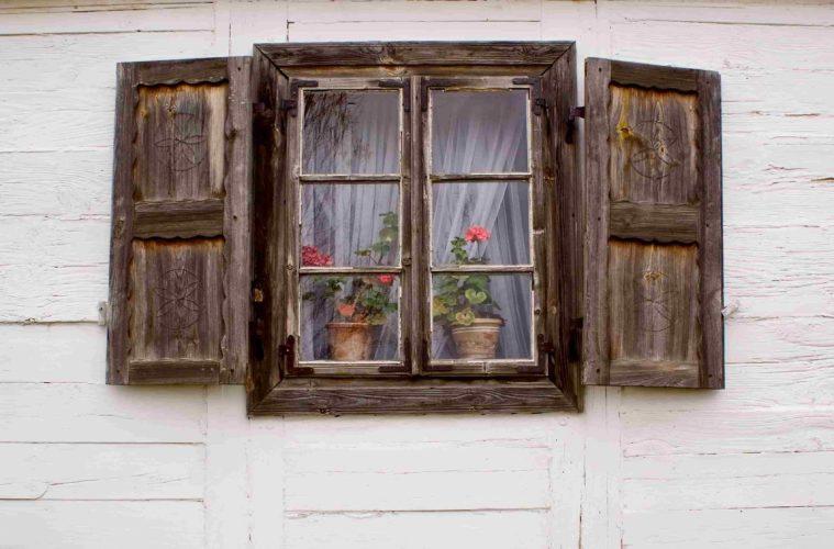 Flowers_in_the_window 4