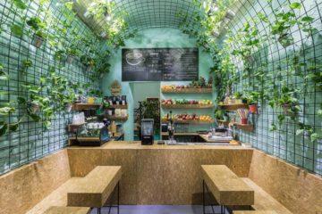 Interior Designs of Fruit Juice Shop
