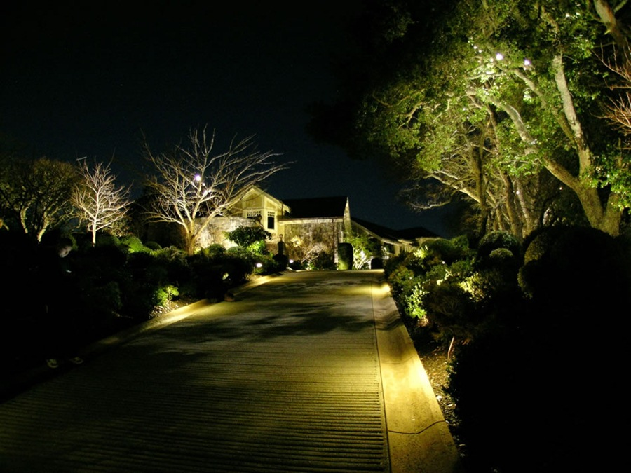 Mesmerizing Walkway Lighting