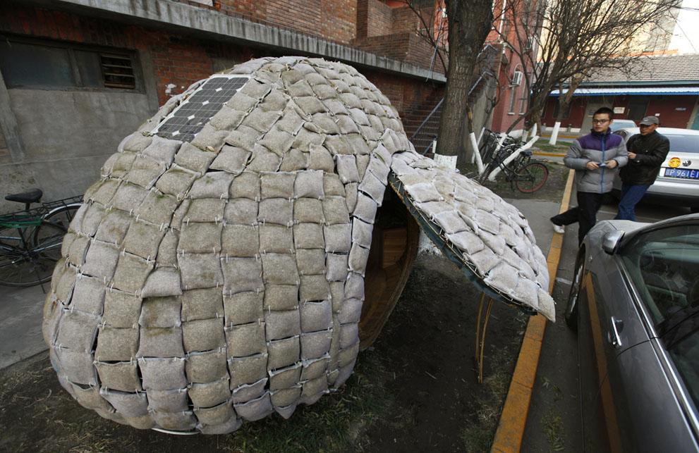 16 Egg House