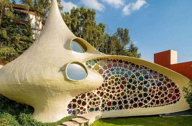 8 Giant Seashell House