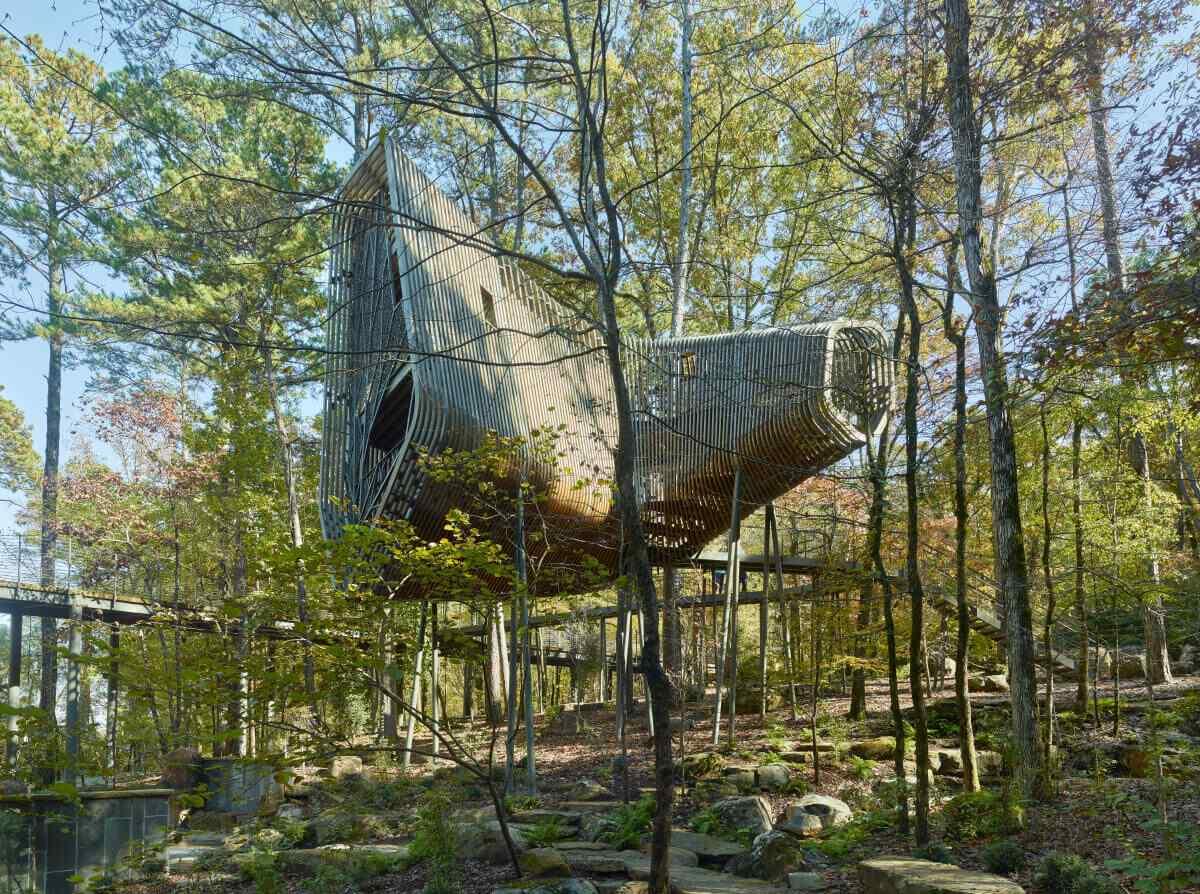 Tree House Design Ideas
