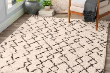 Modern Contemporary Rugs