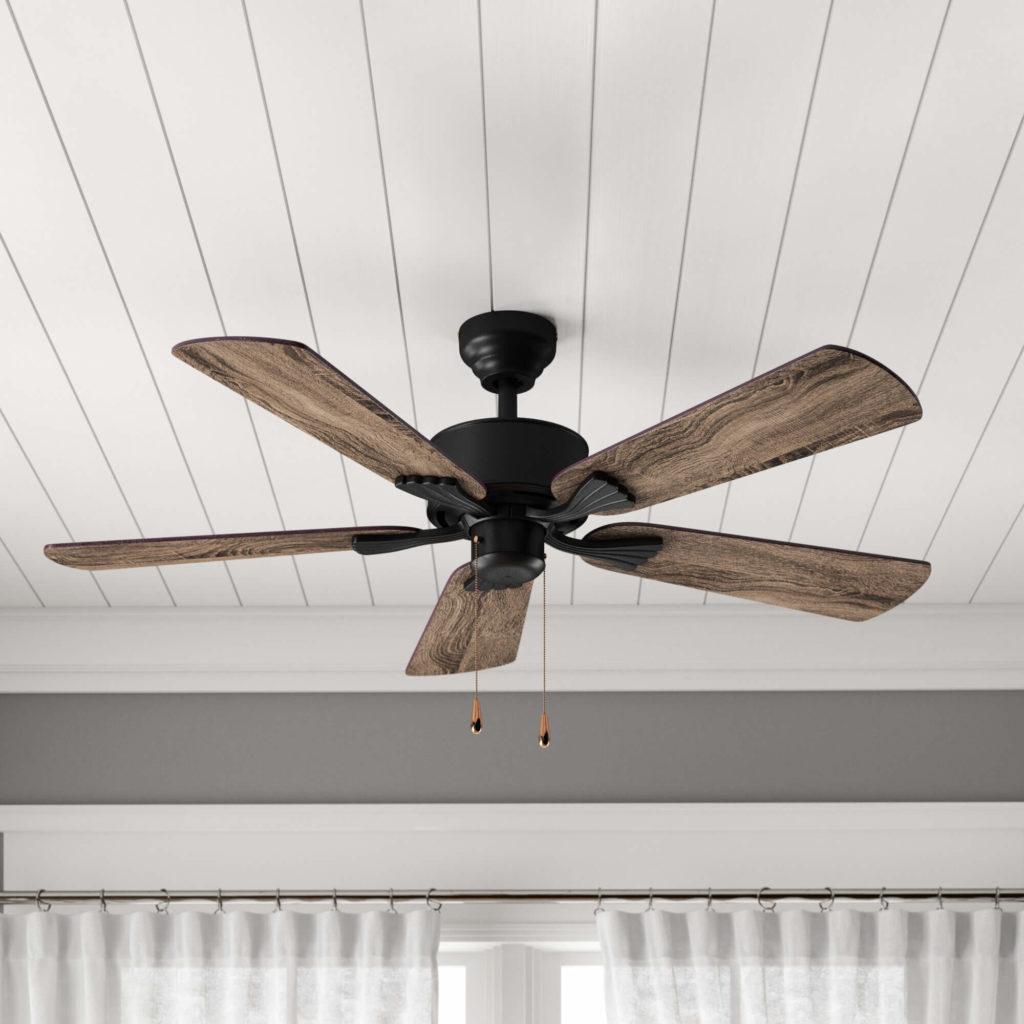 ceilling fan