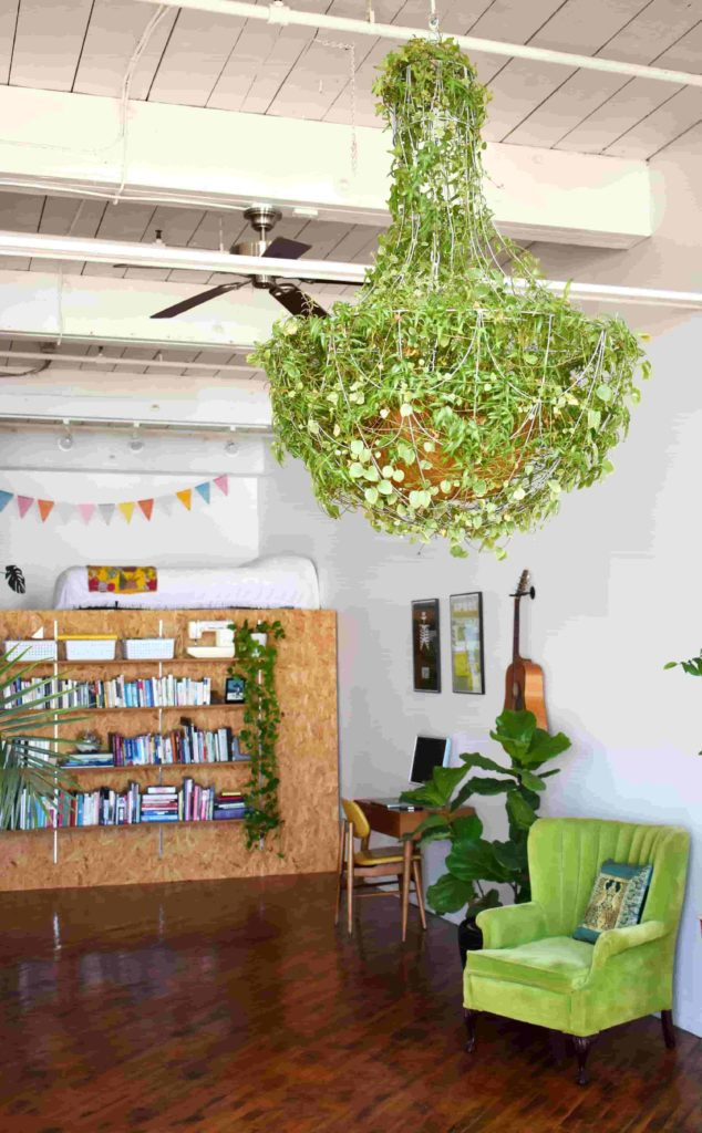 Brighten up Space With Greenery