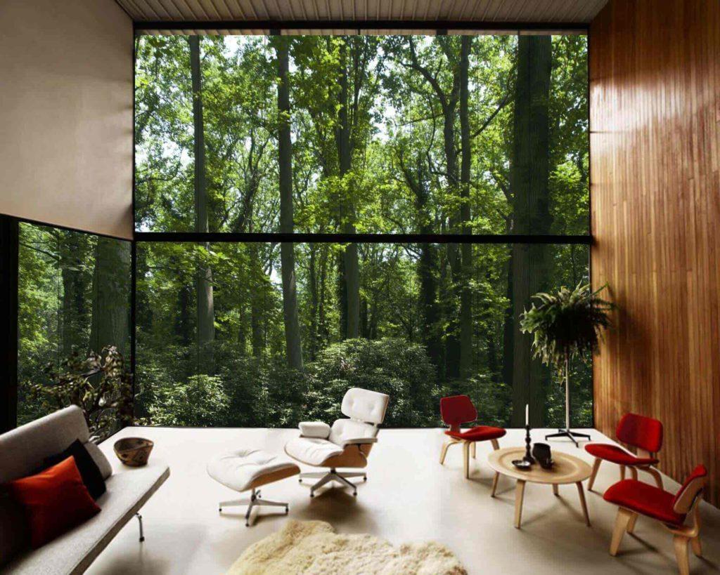 floor to ceiling window