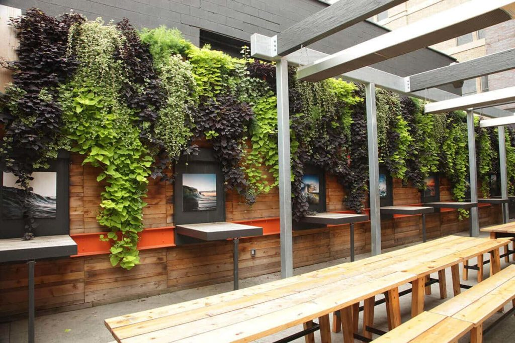 vertical outdoor garden
