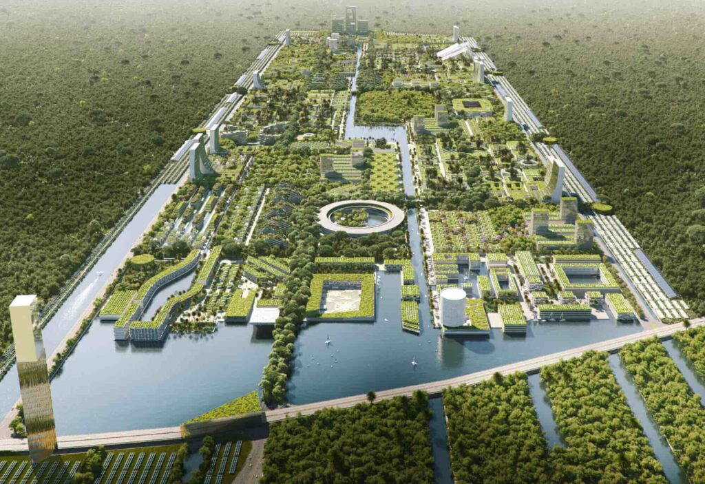 Forest City in Mexico