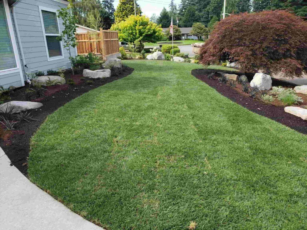 Landscaping Tips for Beginners