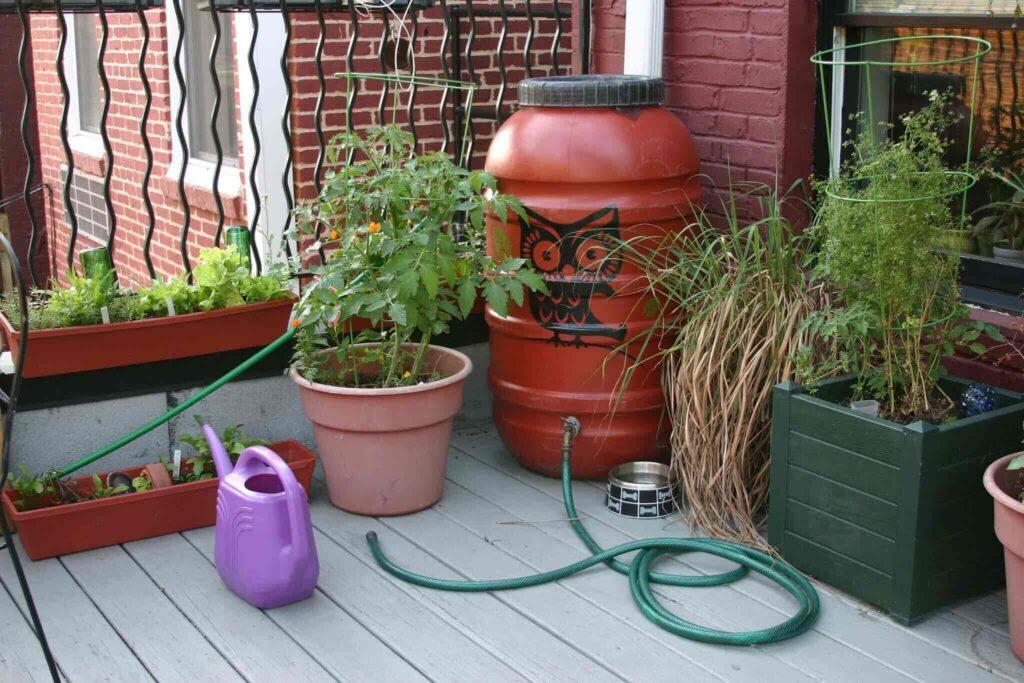 Rain Barrel for Your Garden