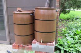 Rain Barrel for Your Garden