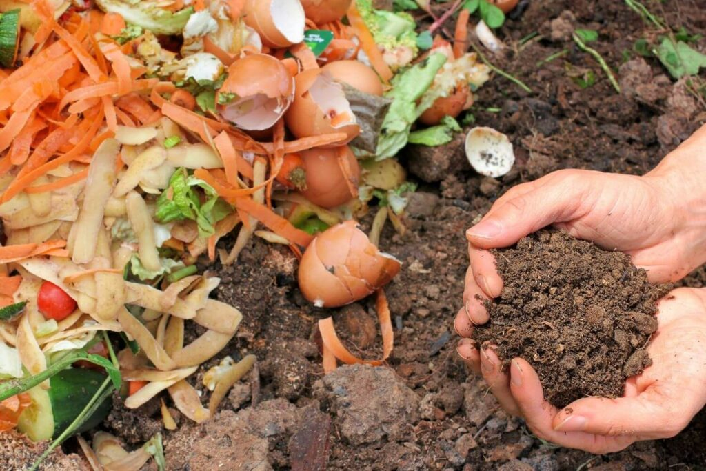 Add Compost Properly