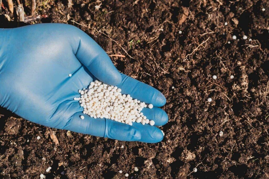 Offer Nitrogen to Garden Soil