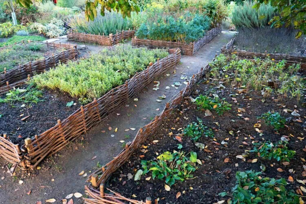 Size Your Garden Beds Properly