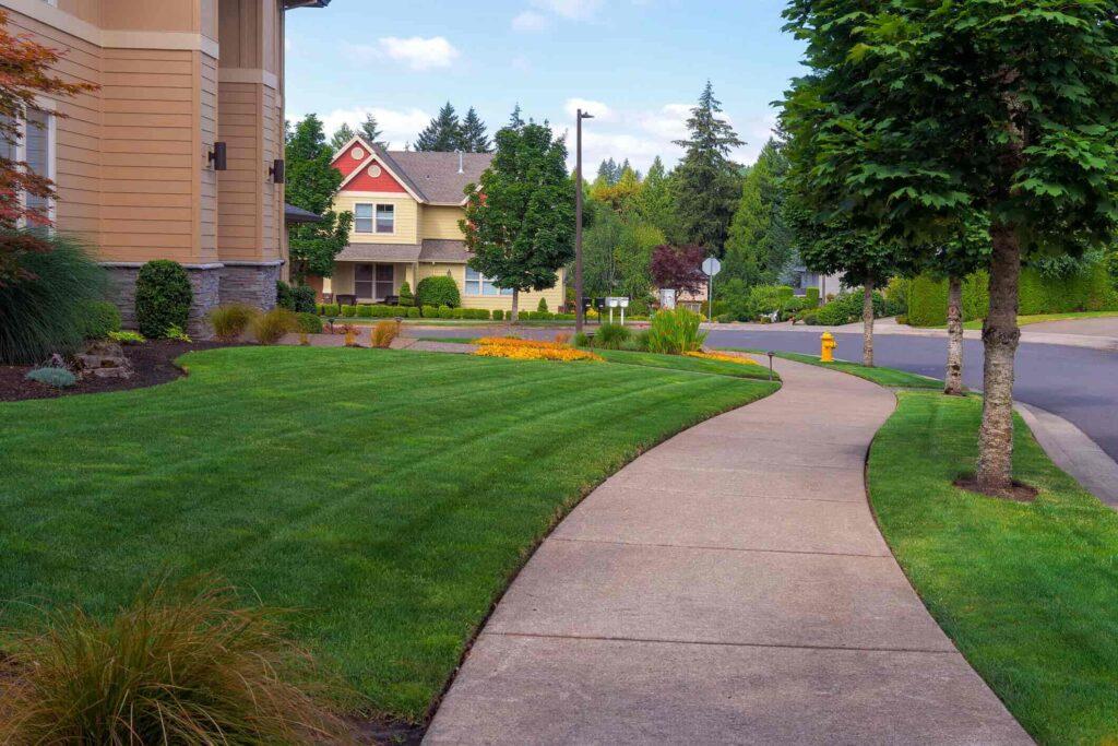 Best Lawn Services