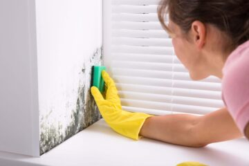 Tips For Getting Rid Of Mold