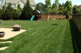 Lawn Repairing