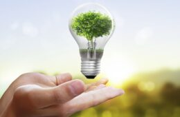 Saving Electricity With Eco-Friendly Solutions