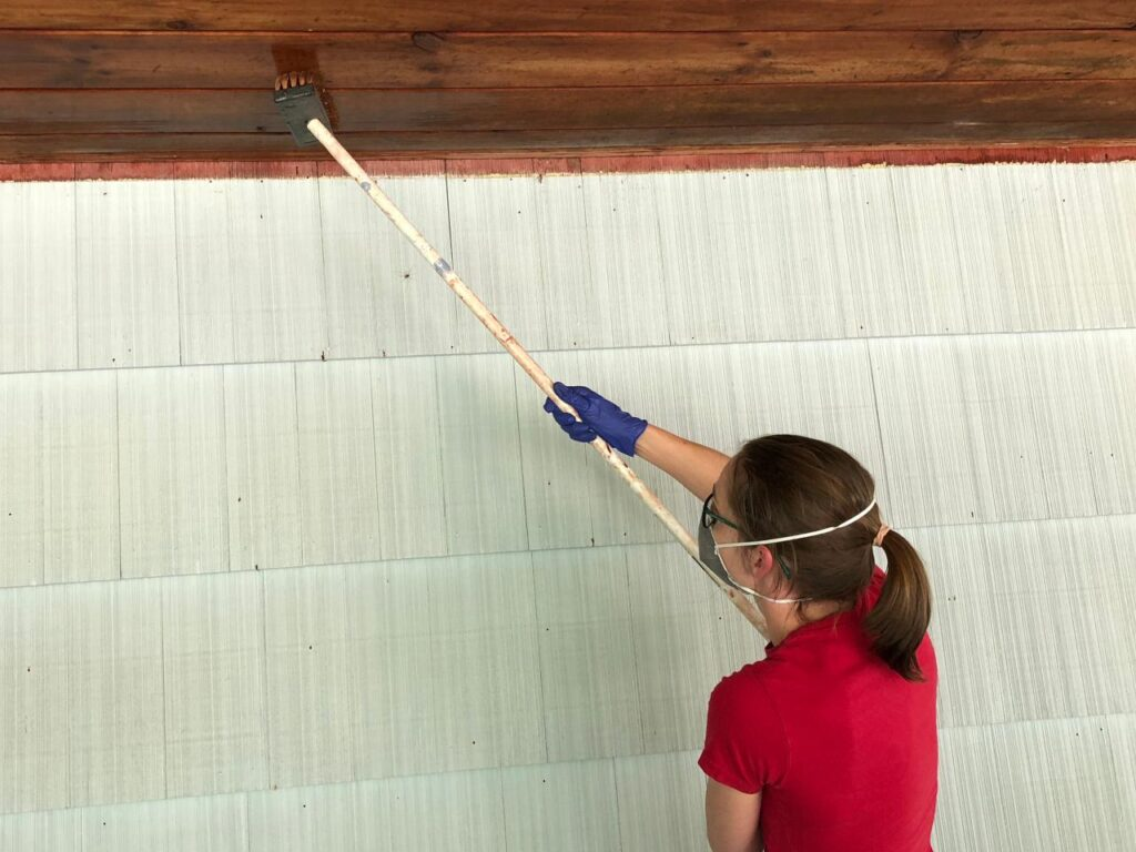 Remove Mould from the Ceiling