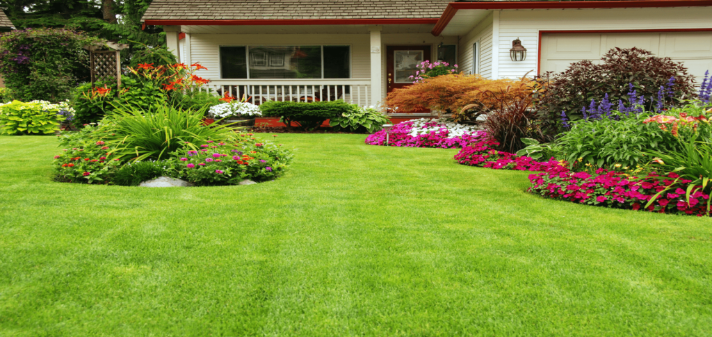 Take Good Care of Your Yard